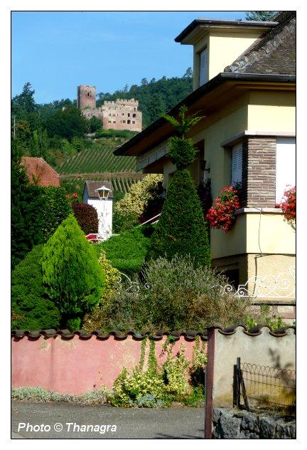 06 kintzheim