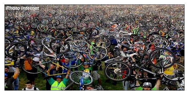 live-bicycle.jpg